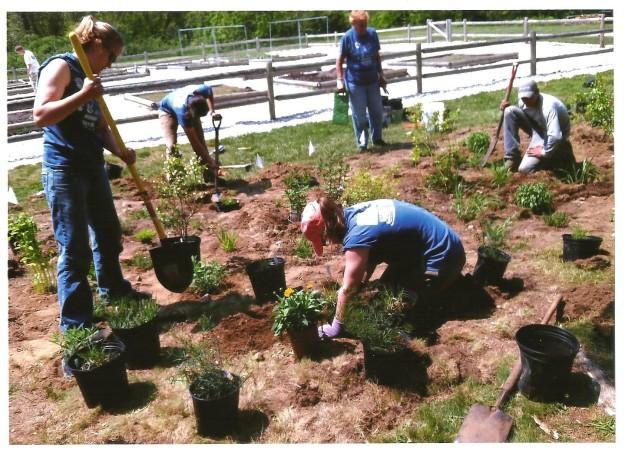 Volunteers planting a community pollinator garden in Mashpee! Credit: Friends of Mashpee National Wildlife Refuge