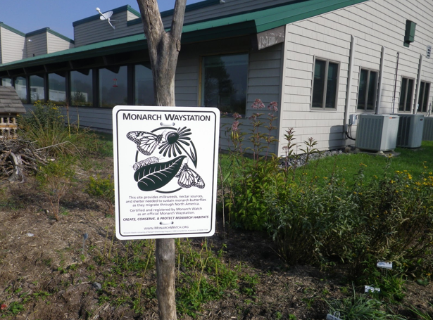 Here's the start of the Canaan Valley NWR pollinator garden! Credit: USFWS