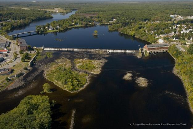 Indian Island sits in the background of this photo of Milford Dam. Photo credit: Bridget Besaw, Penobscot River Restoration Trust