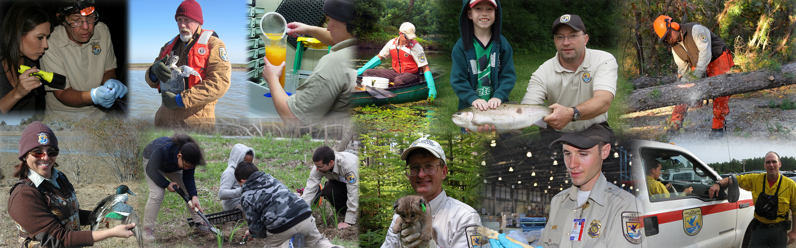 U.S. Fish and Wildlife Service Northeast Region