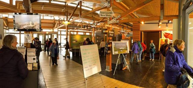 A panoramic shot of the inaugural American Conservation Film Festival--North at our Parker River National Wildlife Refuge. Credit: Anne Post/USFWS