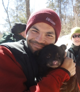 Anthony Ortiz holds another black bear cub. They were only a couple of weeks old! Credit: USFWS