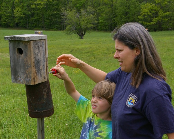 Molly and her son Nick monitor nest boxes made and installed by the Canterbury Elementary School. Photo courtesy of Molly.