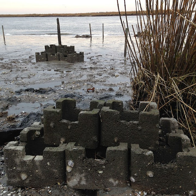 "A partner-funded ""oyster castle"", an example of a living shoreline technique using blocks made of shell, limestone and concrete, is being monitored for effectiveness at Gandy's Beach on the Jersey shore."