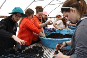 Each student works diligently; transplanting seedlings, mixing soil, working together to help strengthen coastal Maine.
