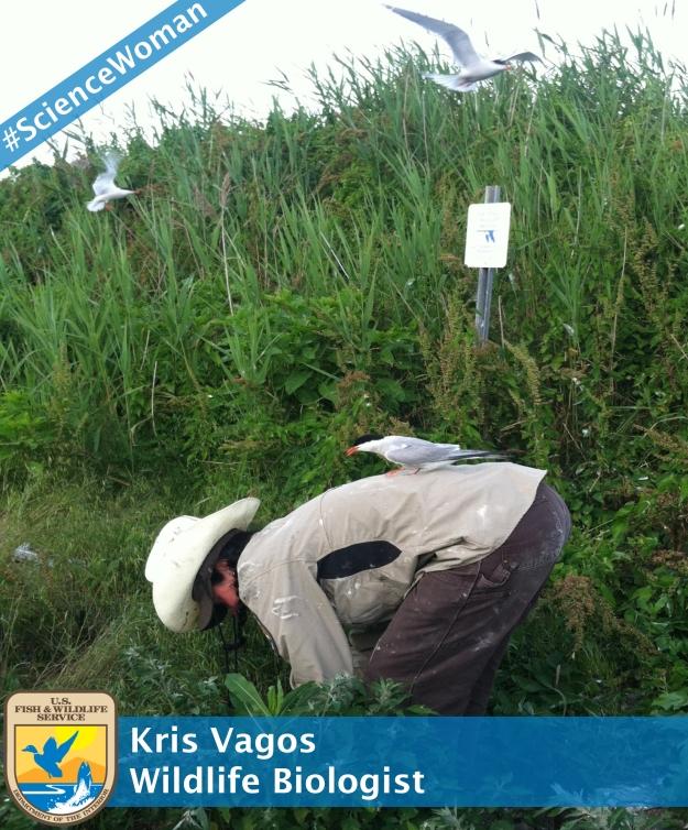 Kris Vagos_branded