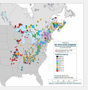 A map showing most of the eastern and midwestern parts of the U.S. affected by white-nose syndrome.