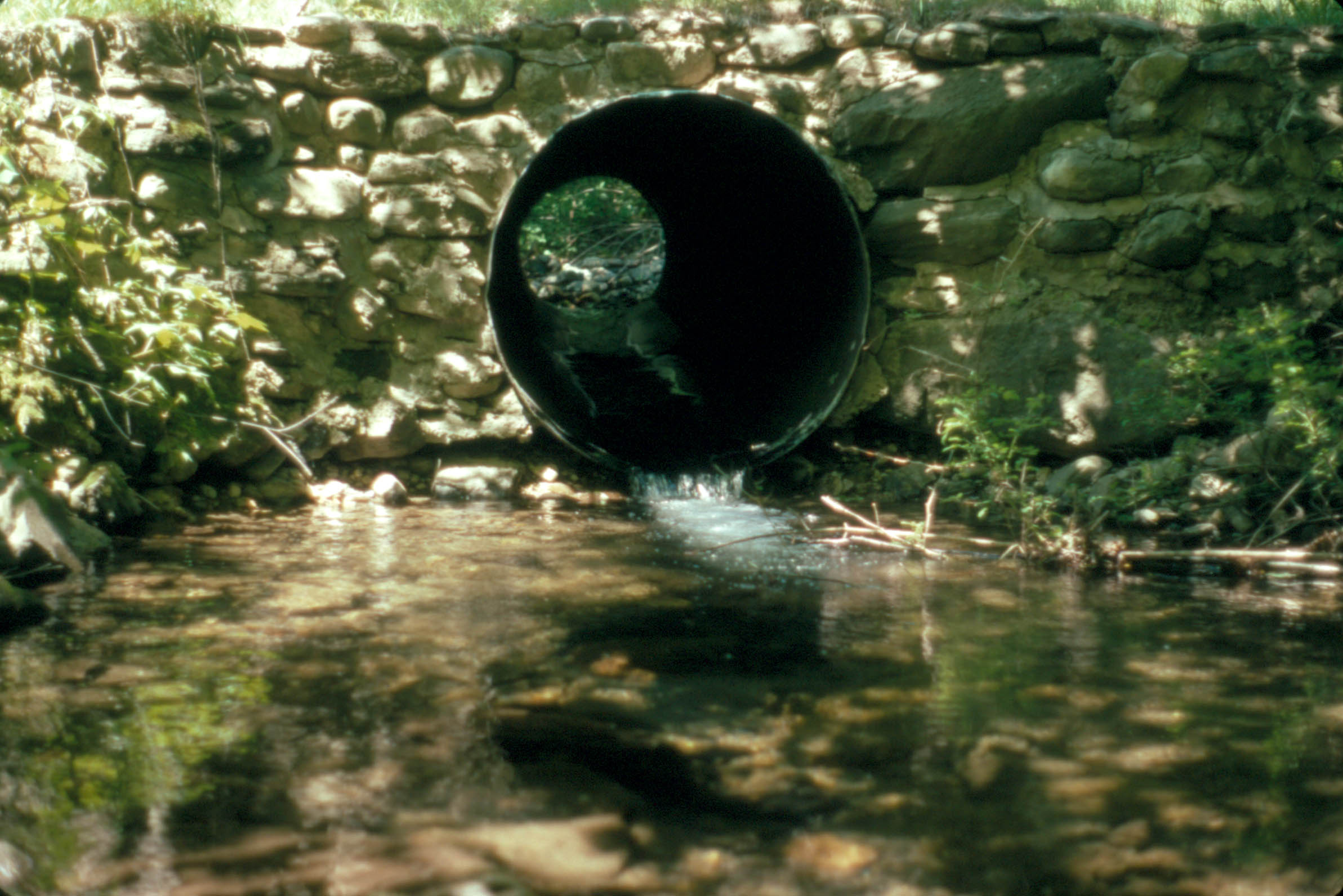 An example of a perched culvert that sits above water, making it more difficult for fish to swim upstream.