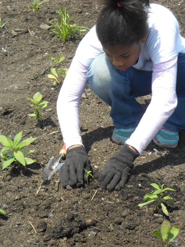 Young people from Buffalo, New York help plant pollinator gardens. Photo credit: USFWS