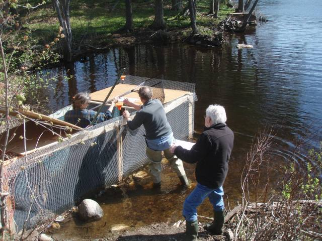 Partners working together on the culvert project. Photo credit: Karen Robbins