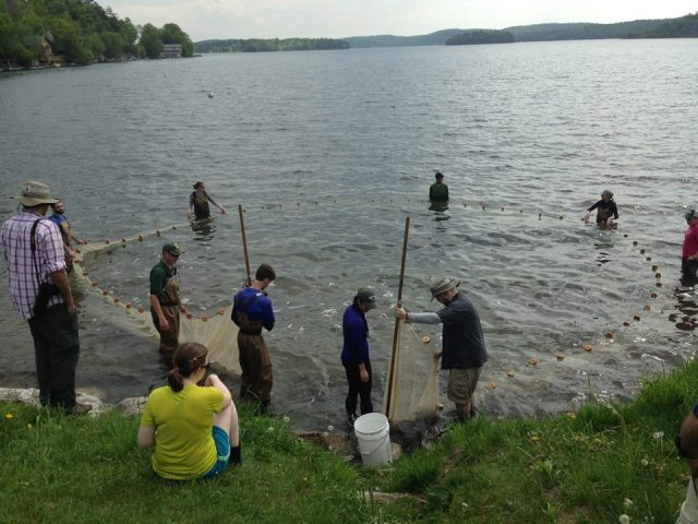 Students work together to learn about fish sampling. Photo credit: Bennett Gould