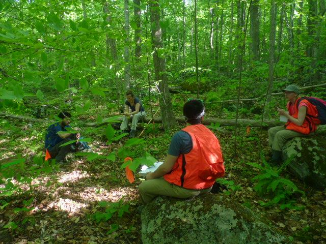 Students in the class setting transect lines. Photo credit: John McDonald