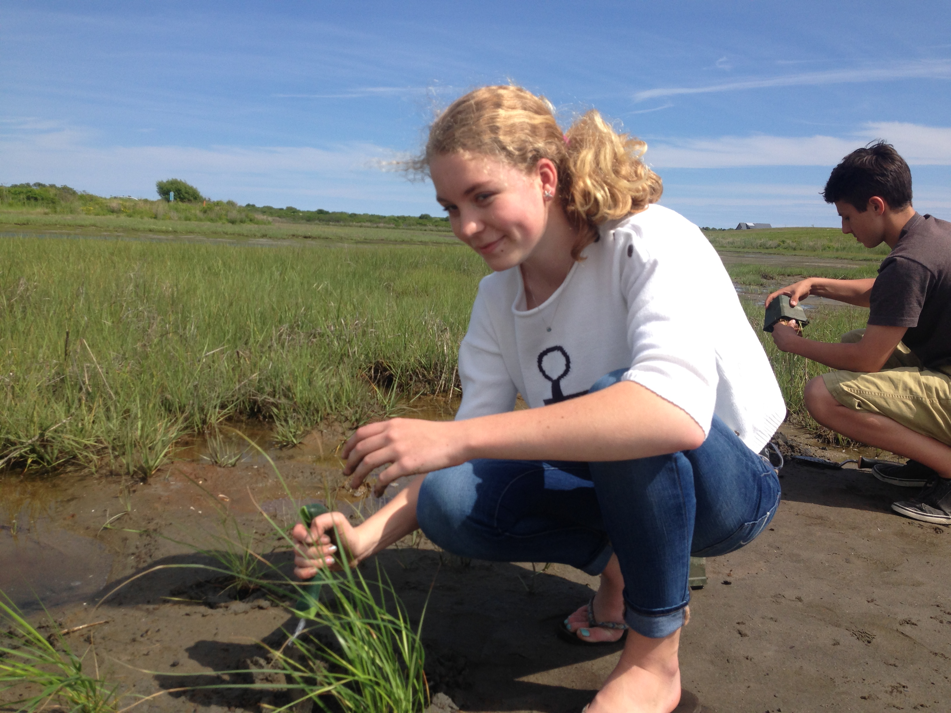 Zoe Clougher of Rogers High School in Newport, Rhode Island, lends a hand in strengthening Sachuest marsh through the spartina grass plug planting project.