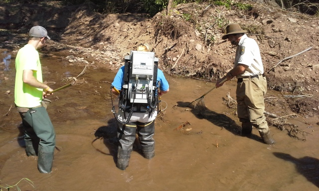 Staff working in stream