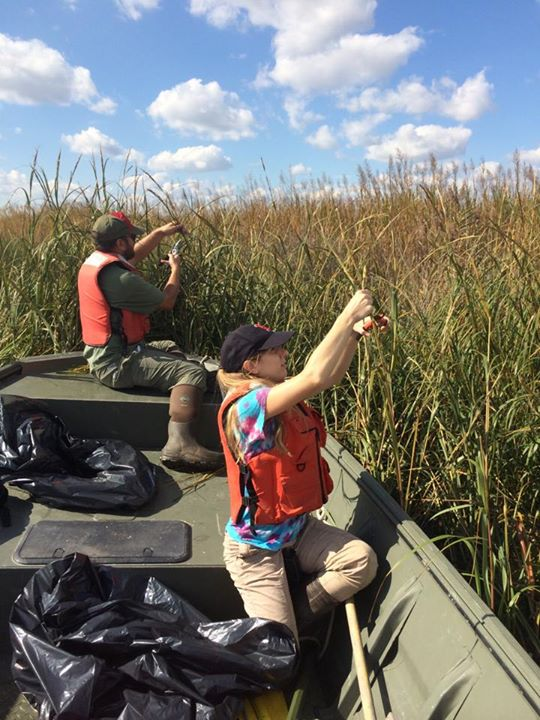 Seeds of Success Interns at Prime Hook National Wildlife Refuge, Delaware