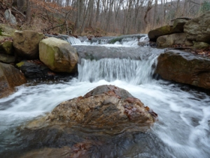 Which headwater streams will continue to meet the needs of Eastern brook even as climate changes? A new model will help decision makers identify prime real estate for cold-water dependent species in the context of global warming. Credit: USFWS.