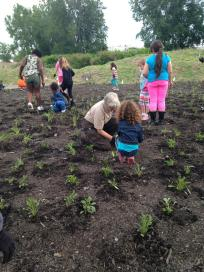 Local Daisy Girl Scouts and Biologist, Betsy Trometer help pollinators by restoring habitat at Silo City in Buffalo, New York.