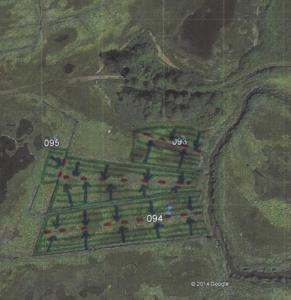One of four sites treated as part of Sandy funding. Vegetation is cut in green areas, and rolled into ditches shown in red. To ensure sufficient drainage, not all ditches are filled.