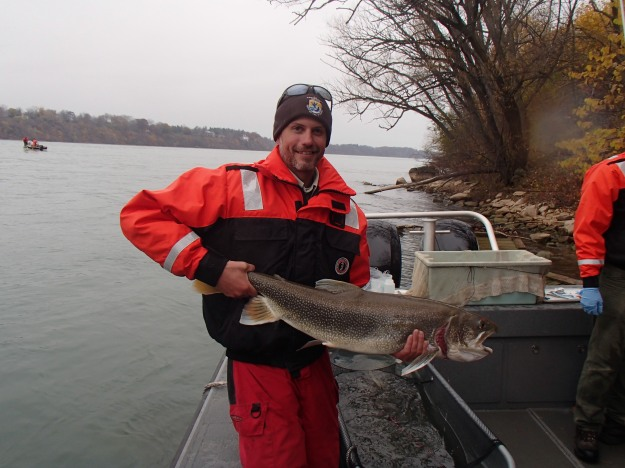 Dan Drake, Lower Great Lakes FWCO with a lake trout caught on the Niagara River in the Niagara Gorge in November 2015. Photo credit: USFWS