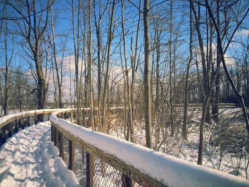 INWR Snowy trail