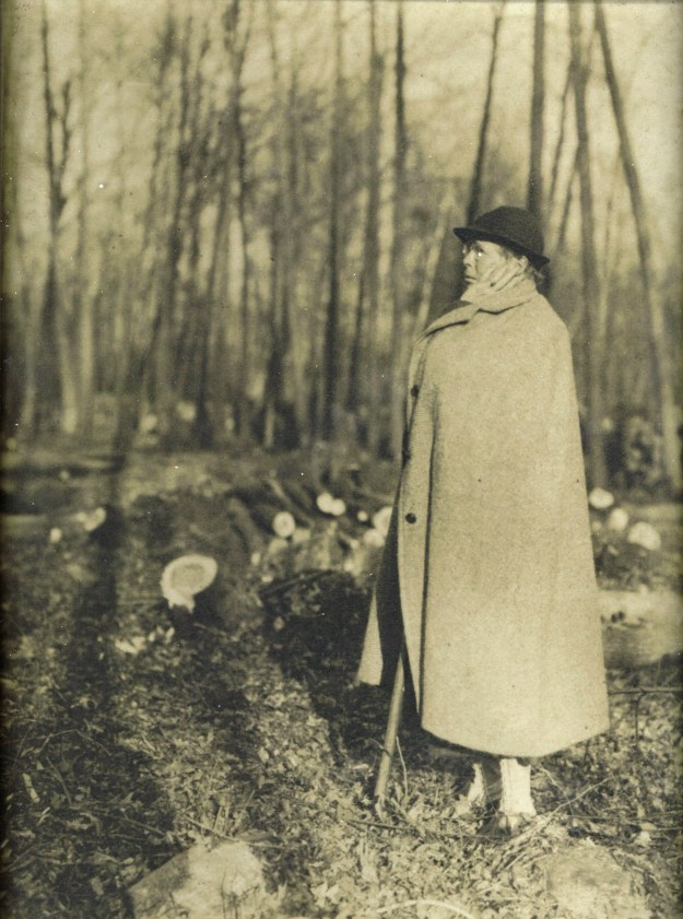 Elizabeth_Read_surveying_downed_trees_after_1939_hurricane (1)