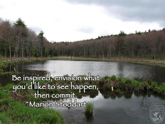 Marion Stoddart Wednesday Wisdom Feature