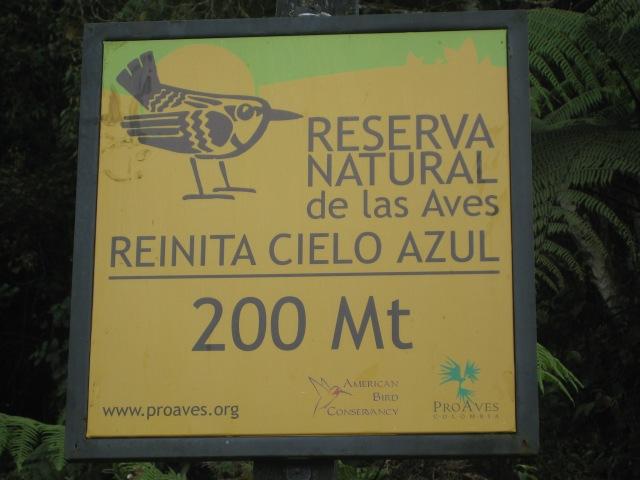 cerulean reserve
