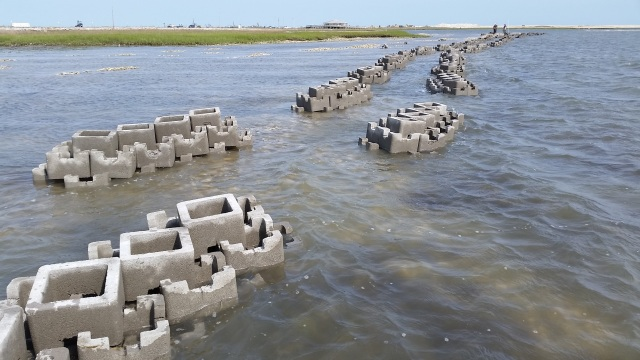 oyster castles at Chincoteague NWR