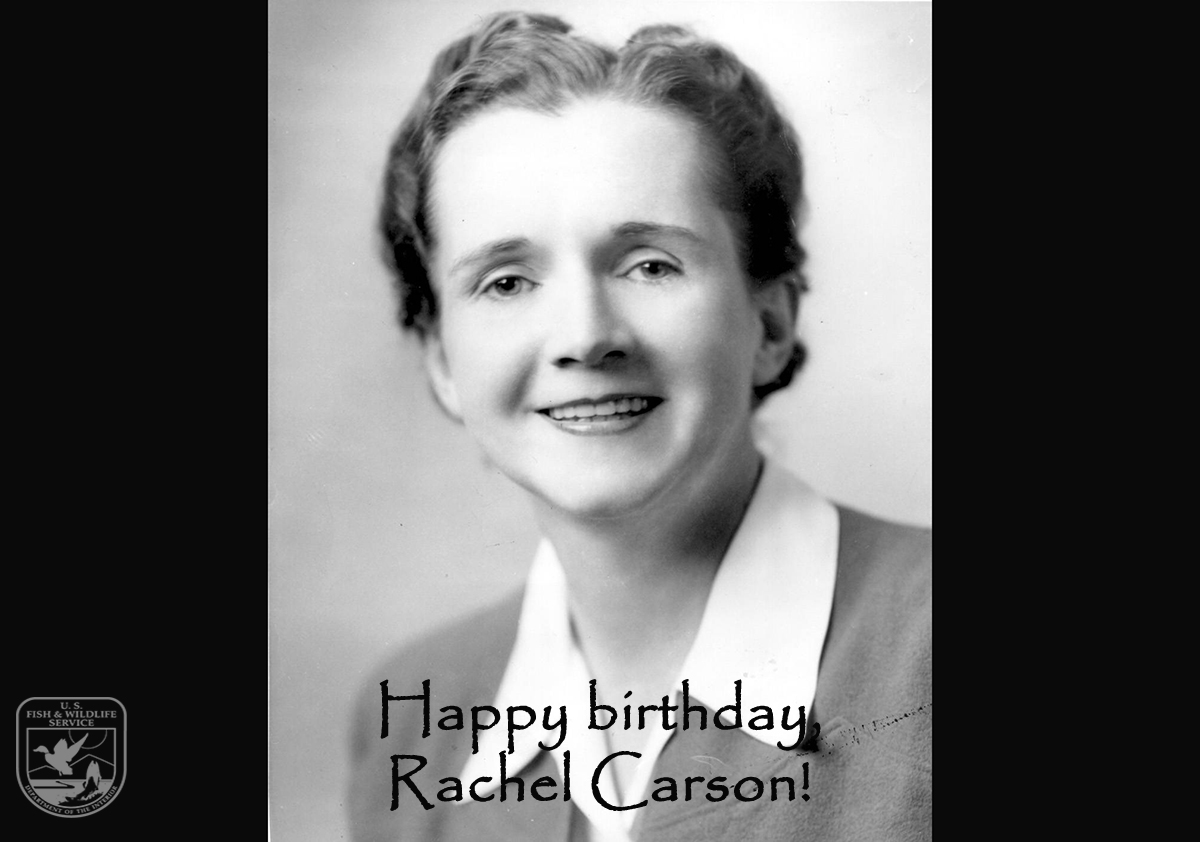 "Posting our #WednesdayWisdom on this Friday, May 27, so we can say ""Happy Birthday, Rachel Carson!"" May 27, 2016 marks the 109th anniversary of the birth of Rachel Carson."