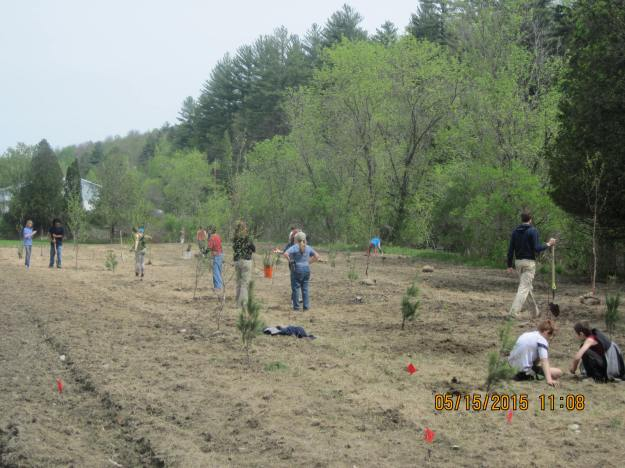 Volunteers helping to plant seeds in the riparian area. Photo credit: USFWS