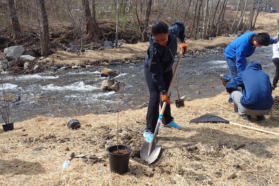 volunteer planting day at Pond Lily dam