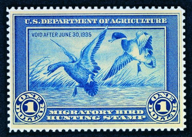 1934-1935 resized.jpg
