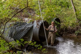 These crushed and rusted pipes are a severe barrier to fish passage along this Maryland road-stream crossing. Credit: Steve Droter