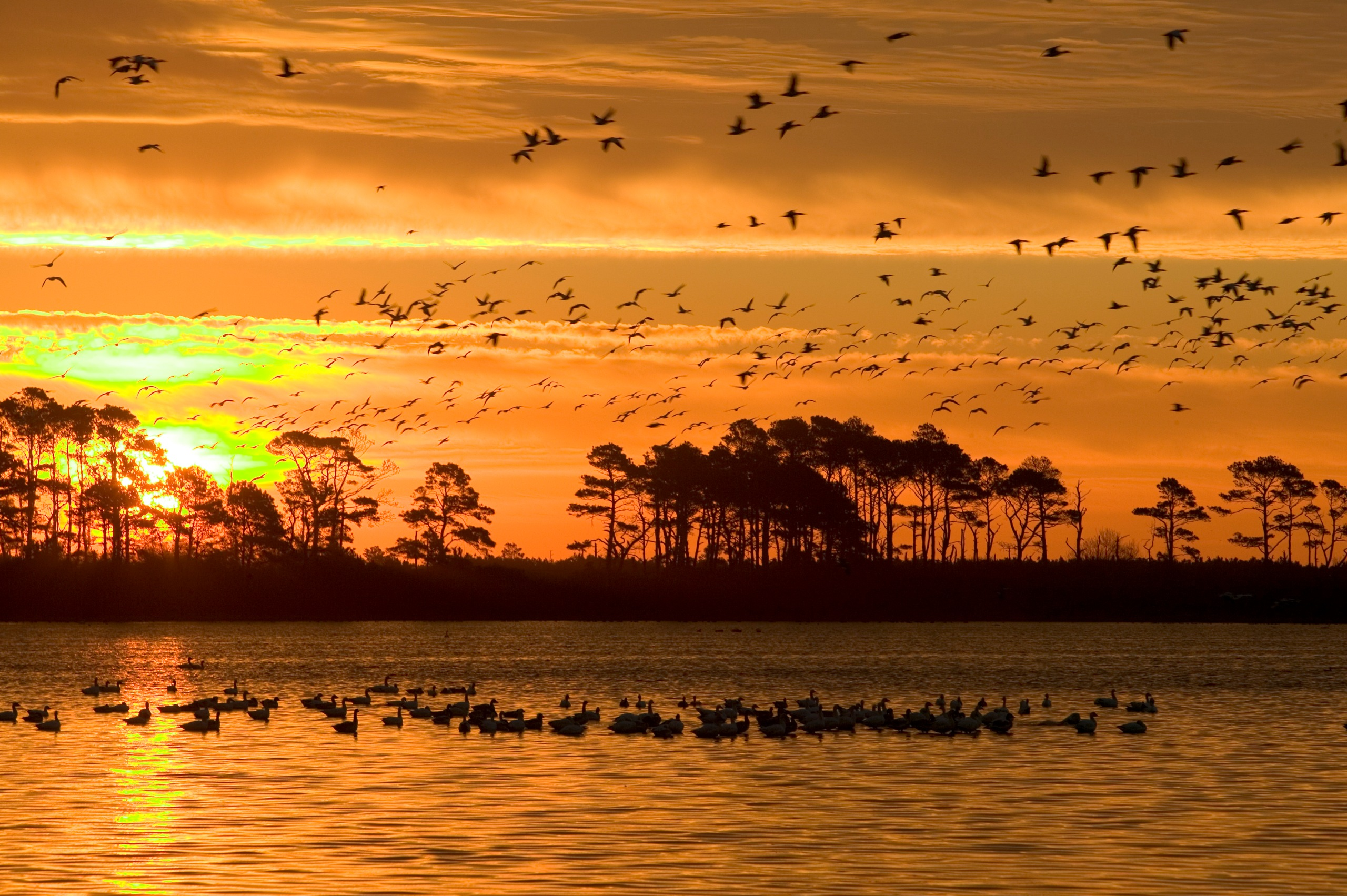 Sunset at Chincoteague National Wildlife Refuge. Credit: Steve Hillenbrand