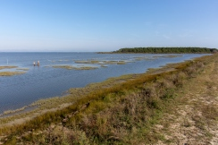 Chincoteague NWR is one of the most visited refuges in the country with more than 1.2 million visitors each year. Credit: Steve Droter