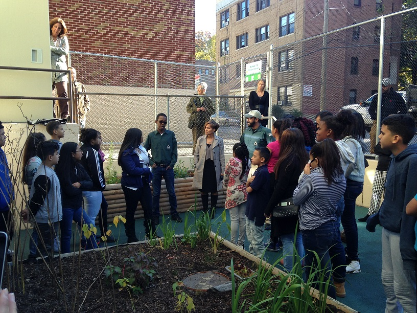 Students gather around garden