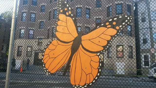 Monarch butterflies are a stark contrast against the urban environment seen outside all the other school windows. The school's STEAM classroom (Science, Technology, Engineering, Arts, Math) has the best view of all! - Photo Credit: Michael Horne