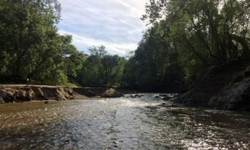 Fish can migrate up the Hazel River from the Rappahanock River now that the Monumental Mill Dam has been removed. Credit: Alan Weaver, VDGIF