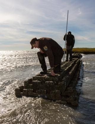 Oyster reef living shoreline FWS