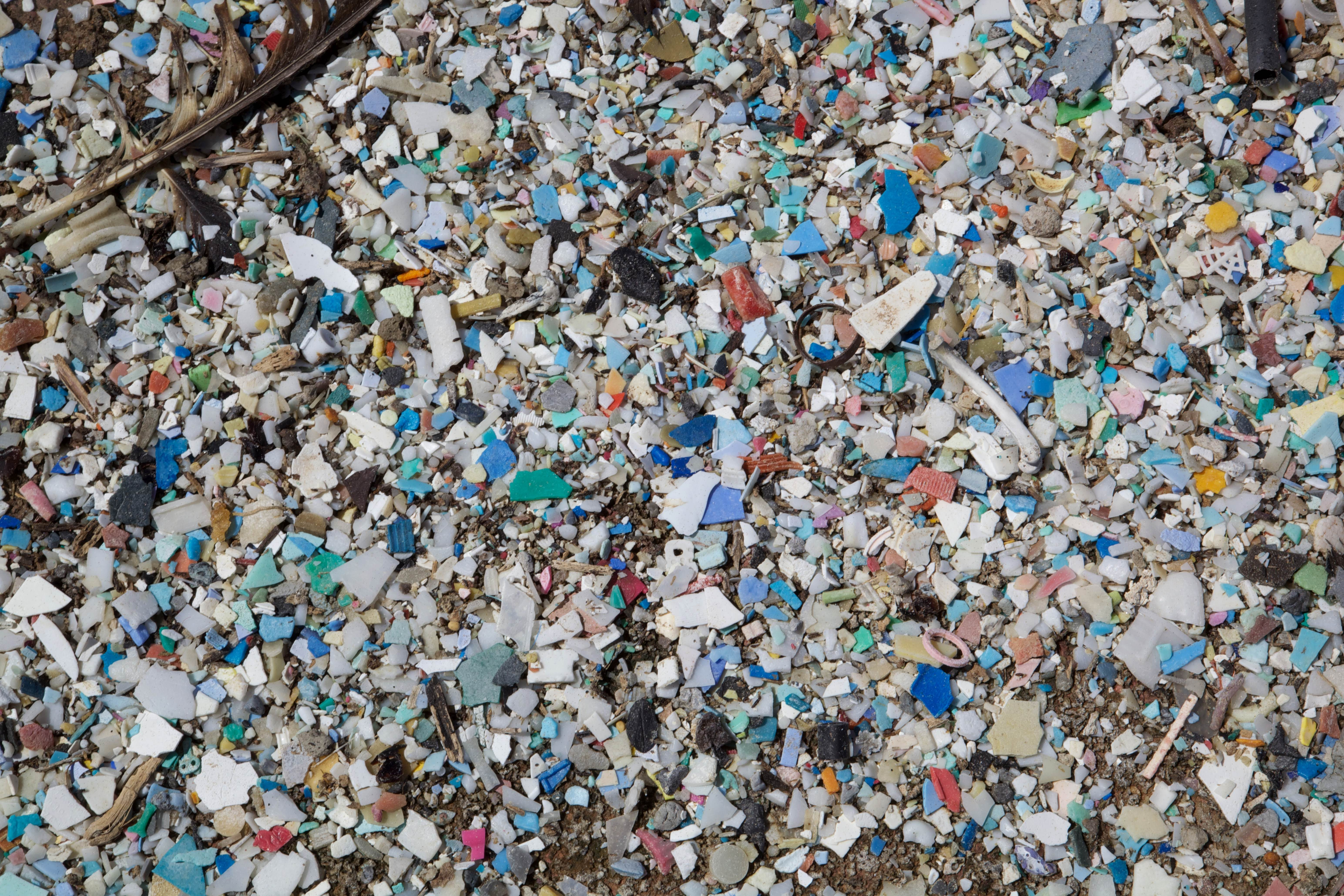 rubbish pollution How was it measured the clean water goal is unusual because its four components--trash pollution, nutrient pollution, chemical pollution and pathogen pollution--indicate both status and.