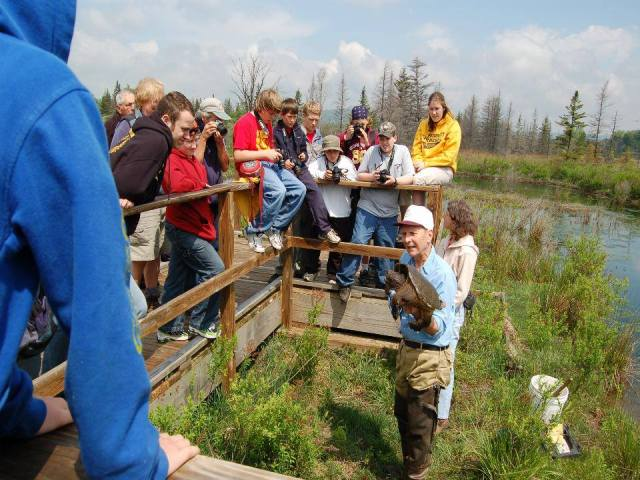 Visitors learning about turtles at Canaan Valley National Wildlife Refuge