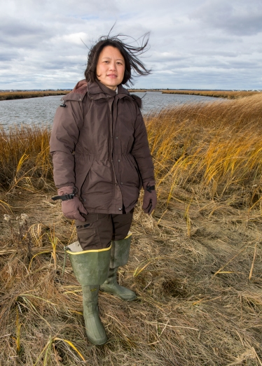 Nancy Pau is a wildlife biologist at Parker River National Wildlife Refuge. Much of her work focuses on restoring resilient salt marsh habitats in the aftermath of Hurricane Sandy. One way she restores resiliency is removing invasive plants, like perennial pepperweed and Phragmites in the Great Marsh. Here, Nancy poses along Plumbush Creek, with Plum Island Turnpike's drawbridge and causeway in the background.