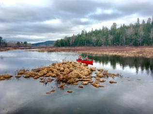 Transporting equipment by canoe.