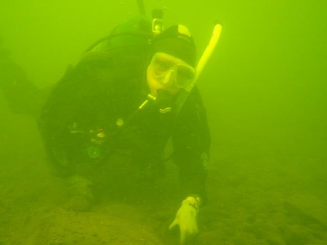Patty Morrison Diving (3)