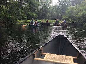 People paddle downstream while herring and shad swim upstream! Credit: David Bunting