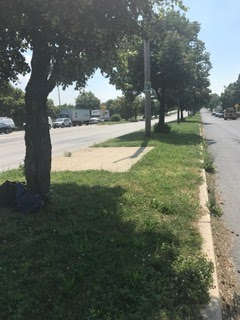 Bus stop at 84th st. and Lindbergh Boulevard.