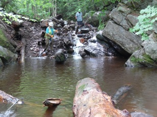 Though a partial barrier still remained after 2 hard days of work, enough logs were removed to allow natural stream processes to flush out sediment and improve fish passage overtime