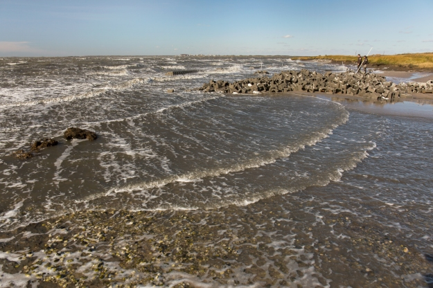 Gandy's Beach oyster reef living shoreline