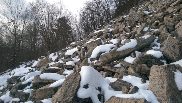 Bats on the rocks new habitat may provide refuge from for Maine fish wildlife
