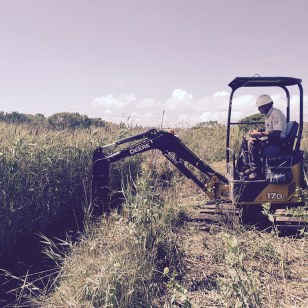 In 2015, the Service created additional channels in the marsh to improve water movement and drainage. Credit: USFWS